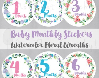 Baby Monthly Growth Stickers - Milestone Bodysuit Stickers - Floral Watercolor Photo Stickers - Floral Baby Month Stickers (MS02)