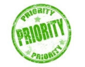Priority Express delivery
