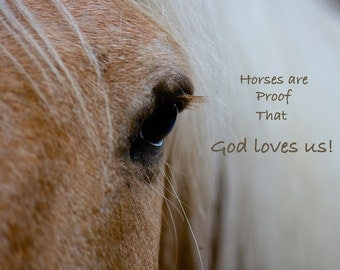Horses Are Proof that God loves Us.