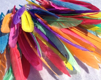 75 Feathers In A Mix Of Colors Scrapbooking Craft Supplies Embellishments