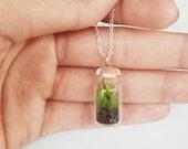 Tiny terrarium necklace   small terrarium necklace
