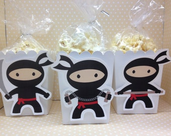 Boy and Girl Ninja Party Popcorn or Favor Boxes - Set of 10