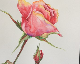 Original Watercolour Rose Wall Art