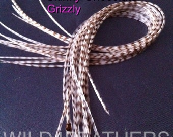 4pc SKINNY CHOCOLATE GRIZZLY Feathers + 1pc BlueOcean Fade Grizzly Individual Feather Pack