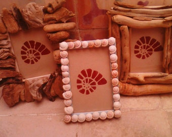 Driftwood/Shell Picture Frames