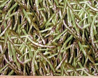 Realistic Asparagus Fabric