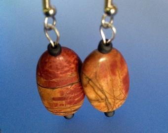 Picture Jasper earrings on surgical steel ear wires