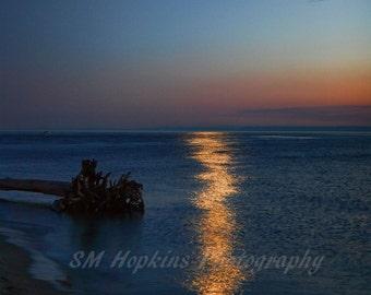 Moonlight over Puget Sound