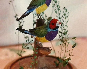 Gouldian Finches hand-painted sculpture in 8 inch crystal dome
