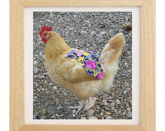 2 CHICKEN SADDLE APRONS hen feather protection from mating roosters chicken jacket denim & material chicken hen clothing backyard poultry