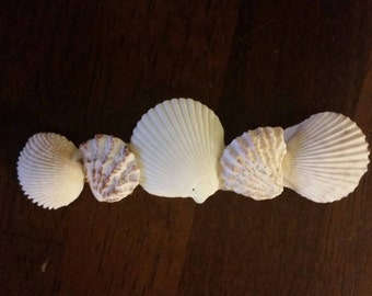 Seashell Hair Barrette