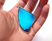 The Simple Blue Morpho Real Butterfly Necklace - Real Butterfly Wing Preserved in Glass - Nature Art Jewelry