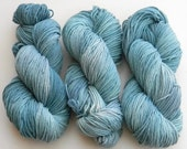 Stormfront - Salsa Monkey worsted weight kettle dyed 100% Merino