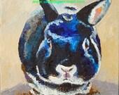 "OriginalBlack Dwarf Bun Oil Painting 10""x10 painted by me Sandra Spencer"