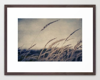 landscape photography- moody nature photo- beige- blue- wall art- home decor- modern home