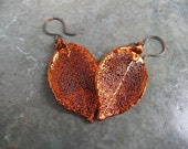 Real Leaf Earrings - Copper - Rose