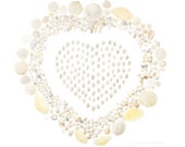 White Shell Valentine No.2 (8 x 10 photograph) shell art, seashells, beach art, coastal decor, heart
