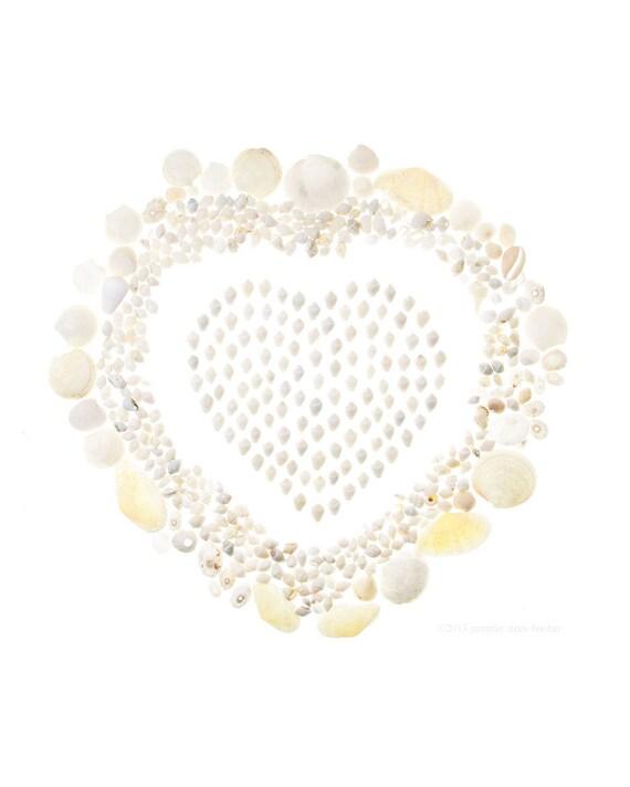 White Shell Valentine No.2 (8 x 10 photograph) shell art, seashells, beach art, coastal decor, heart