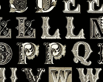 Letters Typography Black White Antique Quilting Treasures 1 yard
