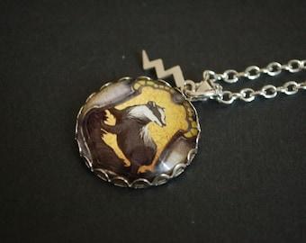 Harry Potter hufflepuff badger crest necklace