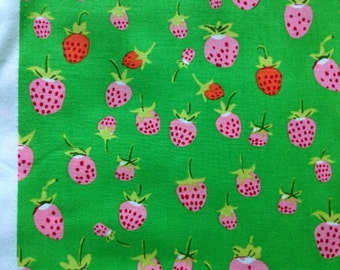 Heather Ross Briar Rose Strawberries in Pink on Green