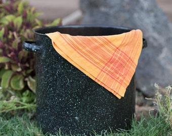 Large Granite Ware Canning Pot - Fall Decoration
