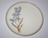Antique English Royal Worcester Hand Painted Porcelain Plate 1889