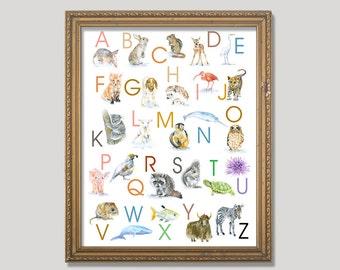 Animal Alphabet Poster - Watercolor Animals 11 x 14 wall art - nursery art – ABC nursery art - ABCs