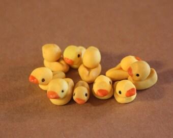 10 pack - Miniature Duck Magnet