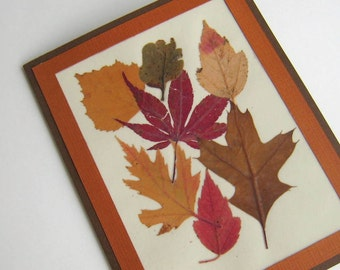 Real Pressed Fall Leaf Greeting Card Reds Golds and Browns Blank Inside