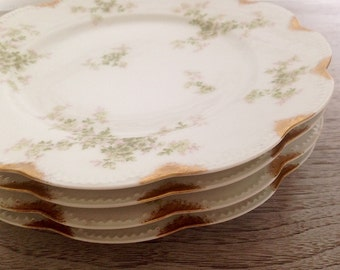 Floral Dinner Plates, Haviland Limoges, Set of Four