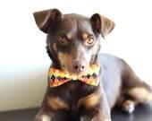 New Color! Halloween argyle or Sea Cliff Plaid, dog collar cat collar pet collar dog bow tie collar dog halloween pe dog holiday collar