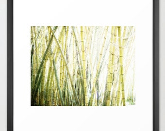 Bamboo, Zen, Inner Peace, Relax, Green, Yellow, White, Fine Art Photographic, fPOE, (6 Sizes)
