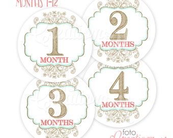 RTS Round Baby Girl Monthly Bodysuit Stickers, Glitter+Gold Milestone Collection - Sets of 4 months or All 1-12 Months