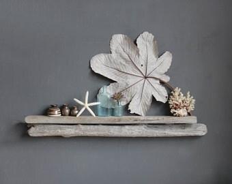 Natural Driftwood Shelf - Size LARGE