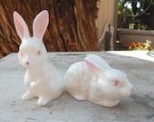 White Porcelain Bunnies  ~  White Porcelain Rabbits  ~  Pair of White Bunnies  ~  Pair of White Rabbits  ~  White Rabbit  ~  White Bunny