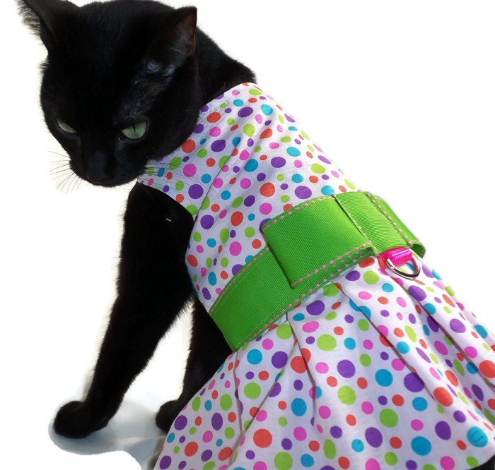 cat dress cat clothes polka dot cat dress by