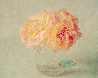 flower nature photo print - whimsical fine art still life photography, floral, roses, rose photo, peach, home decor, wall art