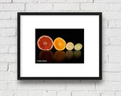 Food Art, Citrus Wall Art, Colorful Fruit: 5x7 Matted Photo