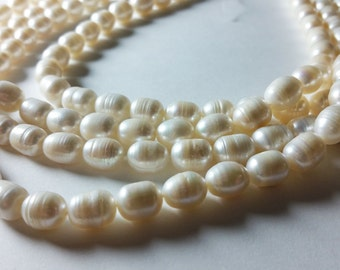 Pearl Oval Beads 8mm - 9mm