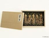 Korean Ginseng 5 Roots, Wild Oriental medicinal Herbs plants- Dollhouse Miniature