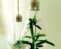 Popular Items For Light Bulb Vase On Etsy