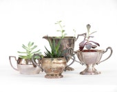 Vintage Instant Silver Collection - Shabby Chic Succulent Planter - Rustic Wedding - Vintage Silver Planter - Boho Decor
