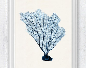 Blue Sea fan coral no.07 - Ocean print -  sea life print-Marine  sea life illustration A4 print SPC086