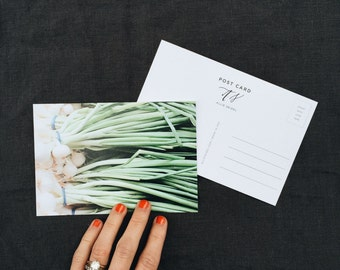Calligraphy Post Card | Green Onions | Pack of 5 | 100% Recycled