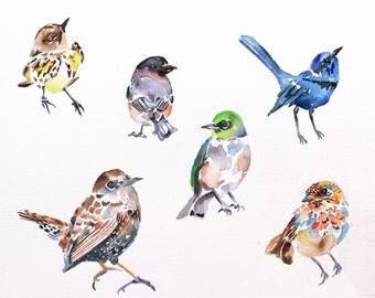 six birds . original watercolor painting
