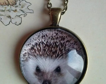 Hedgehog Jewelry forest Animal Picture pendant necklace