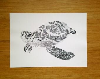 Endangered Hawksbill Turtle A4 Print