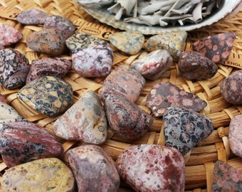 Leopard Skin Jasper ~ 1 medium Reiki infused tumbled stone