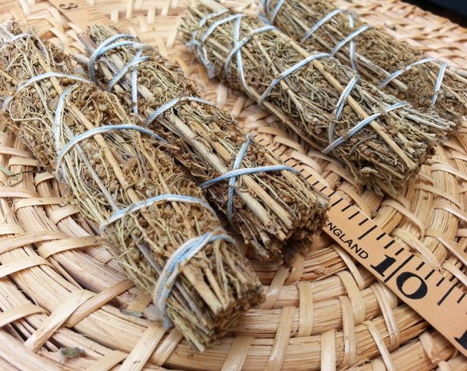 Small Desert Sage (Artemesia tridentata) ~ Bundle approximately 4 inches, wild harvested, Reiki infused
